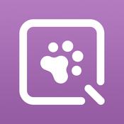 ResQWalk App logo